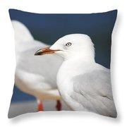 Two Boardwalk Gulls Throw Pillow