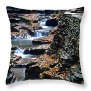 Two Kinds Of Steps Throw Pillow