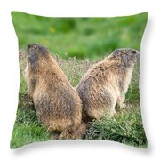Two Marmots Throw Pillow
