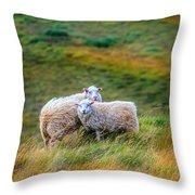 Two Sheep Throw Pillow