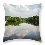 Unicorn Lake Throw Pillow