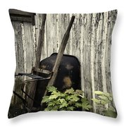Used Throw Pillow