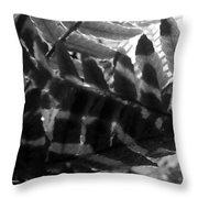 1 V Na Fern Zz Bw Throw Pillow