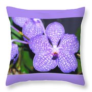Vanda Orchid Throw Pillow