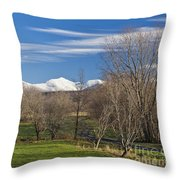 Vermont November Throw Pillow