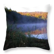Vermont Pond Throw Pillow