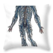 Vesalius: Nerves, 1543 Throw Pillow