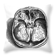Vesalius: Olfactory Organs Throw Pillow
