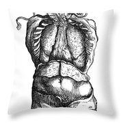 Vesalius: Thoracic Cavity Throw Pillow