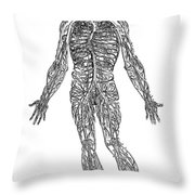 Vesalius: Venous System Throw Pillow