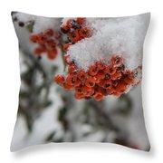 Viburnum Shrub In Snow Throw Pillow