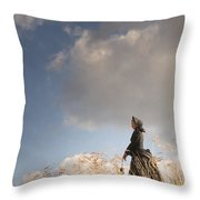 Victorian Or Edwardian Woman Alone In A Sunny Meadow Throw Pillow
