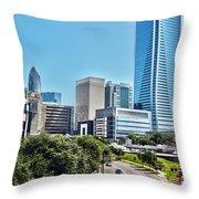 view of Charlotte North Carolina Throw Pillow