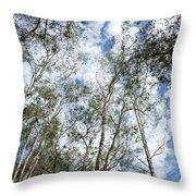 View Of Towering Trees Throw Pillow