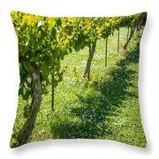 Vineyard Farm Throw Pillow