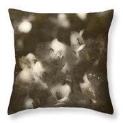 Vintage Floral Background Throw Pillow