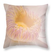 Vintage Pink And Yellow Flower Throw Pillow