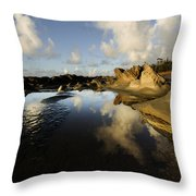 Visions Of Nature 6 Throw Pillow