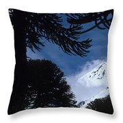 Volcano In Patagonia, Argentina Throw Pillow
