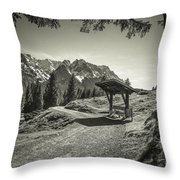 walking in the Alps - bw Throw Pillow