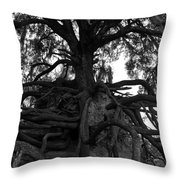 Walking Oak Throw Pillow