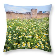 Walls Of Fes In Morocco Throw Pillow