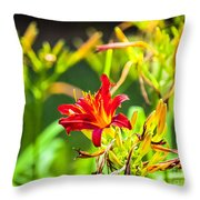 Wascana-84 Throw Pillow