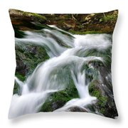 Water Fall 1 Throw Pillow