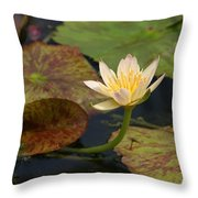 Water Lily 25 Throw Pillow