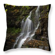 Water On The Mountain Throw Pillow