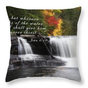 Waterfall With Scripture Throw Pillow