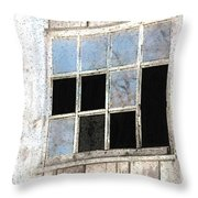 Weatherworn Throw Pillow