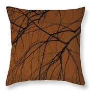 Weeping Birches Throw Pillow