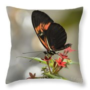 Well Poised Throw Pillow