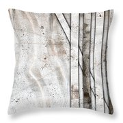 Western Territory 1 Throw Pillow