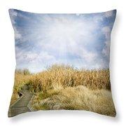 Wetland Walk Throw Pillow