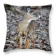 What Was That Throw Pillow