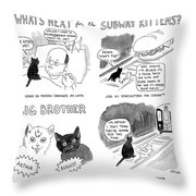 What's Next For The Subway Kittens Throw Pillow