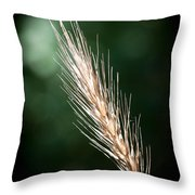 Wheat Grass Throw Pillow