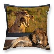 While The Lion Sleeps Tonight Throw Pillow