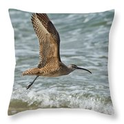 Whimbrel In Flight Throw Pillow