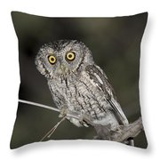 Whiskered Screech Owl Throw Pillow