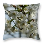 White Cherry Blossoms Throw Pillow