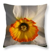Paper White Daffodil Throw Pillow