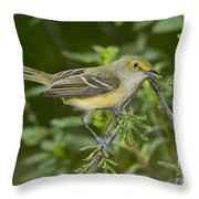 White-eyed Vireo Throw Pillow