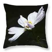 White Flower In Bloom Throw Pillow