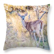 White Tail Deer Bambi In The Wild Throw Pillow