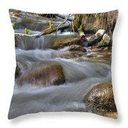 Whites Creek Throw Pillow