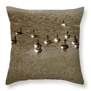 Wild Birds And Pond Throw Pillow
