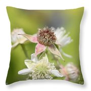 Wild Black Raspberry Blossom Throw Pillow